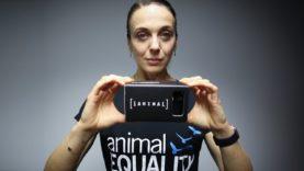 Amanda Abbington introduces iAnimal – 42 days in the life of chickens