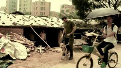 Animal Equality salva la cagnetta Vita e i suoi otto cuccioli da un macello in Cina