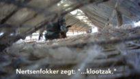 Animal Rights filmt gruwelijke vergassing van nertsen met verborgen camera's
