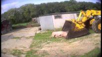 Buried zone | Harling Farm
