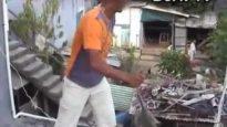 Cruel monkey trade in Mauritius exposed