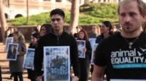 Giornata Internazionale per i Diritti Animali 2014