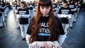 International Animal Rights Day 2012  | Madrid (Spain)