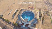 #Lalorocasaèilmare AZIONE al Delfinario di Rimini | Essere Animali