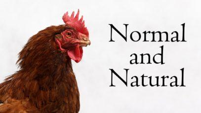 Normal and Natural