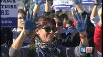 PROTESTA di fronte al delfinario Rimini – Servizio su TGR