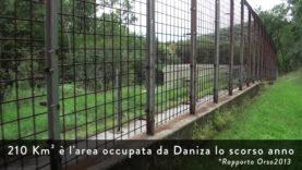 Azione per Daniza al Centro Forestale Casteller
