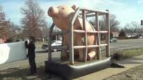 Giant, Inflatable Pig Stands Outside South Topeka Walmart In Protest