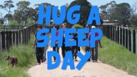 Hug a Sheep Day