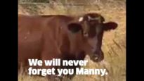 Manny's story.