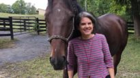 Rescued Racehorse Runs Into His New Guardian's Heart