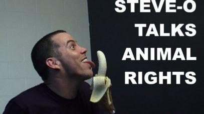 Steve-O spiega perché è Vegan