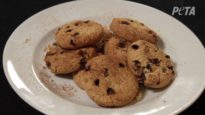 The Perfect Egg Replacer in Cookie Recipes is Already in Your Cabinet