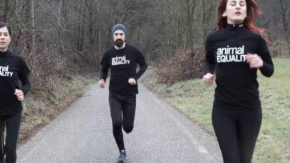 #RUN4ANIMALS: Corri con noi per un mondo senza gabbie.