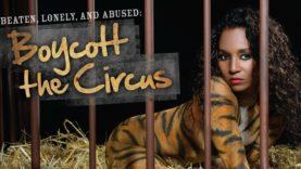 TLC's Chilli Fights Circus Cruelty