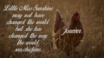 Little Miss Sunshine Tribute