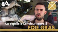 Carrefour vende foie gras: ecco cosa pensano i clienti