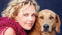 Undercover Puppy Mill Investigation