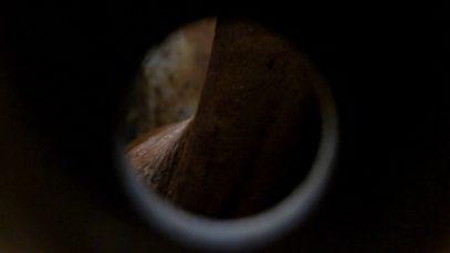 Matadero. Lo que la industria cárnica esconde. // Tráiler del documental.