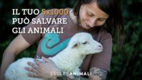 Il tuo 5×1000 può salvare gli animali