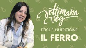 Focus nutrizione Settimana Veg: IL FERRO