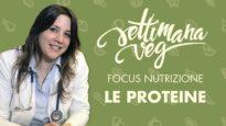 Focus nutrizione Settimana Veg: LE PROTEINE