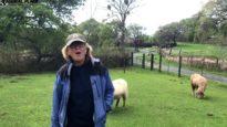 Volunteer Spotlight: Susan