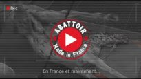 Abattoir made in France - Alès (English subtitles)