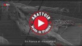 Abattoir made in France – Alès (English subtitles)