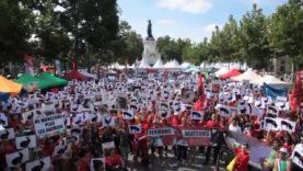 Fermons les abattoirs ! Marche internationale - Paris