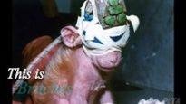 La storia di Britches – La scimmietta dagli occhi cuciti