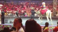 Camel PUNCHED in the neck at UniverSoul Circus