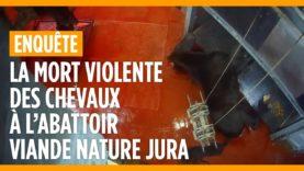 La mort violente des chevaux à l'abattoir Viande Nature Jura