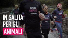 il 16 luglio riparte #Run4Animals!