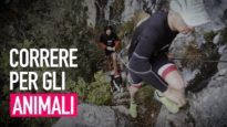 Run4Animals – La maratona che difende gli animali