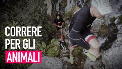 Run4Animals - La maratona che difende gli animali