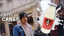 Berresti latte di cane? - Esperimento sociale
