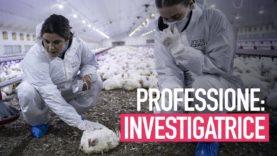 Le investigatrici: donne coraggiose per i più indifesi