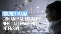 WITH MY OWN EYES: Rooney Mara per Animal Equality