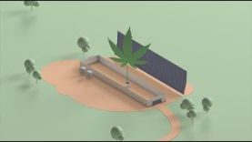 The Transfarmation Project: Helping Animal Farmers Switch to Plants
