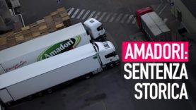 Amadori: allevatori patteggiano per maltrattamento