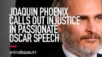 Joaquin Phoenix Calls Out Injustice in Passionate Oscar Speech