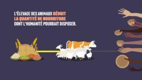 L214 EDUCATION Nourrir l'humanité #9 : Les impacts de l'industrie de la viande