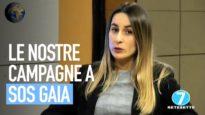 Le campagne di Animal Equality su SOS Gaia