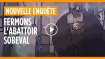 L'enfer des veaux à l'abattoir Sobeval (version filtrée)