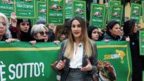 SUBWAY: la protesta a Verona