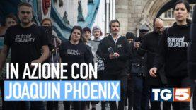 TG5: Joaquin Phoenix con Animal Equality a Londra contro gli allevamenti
