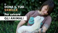 IL TUO 5XMILLE SALVA GLI ANIMALI