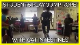 Students Play 'Jump Rope' With Cat Intestines in Class
