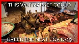 This Wet Market Could Breed the Next Covid-19